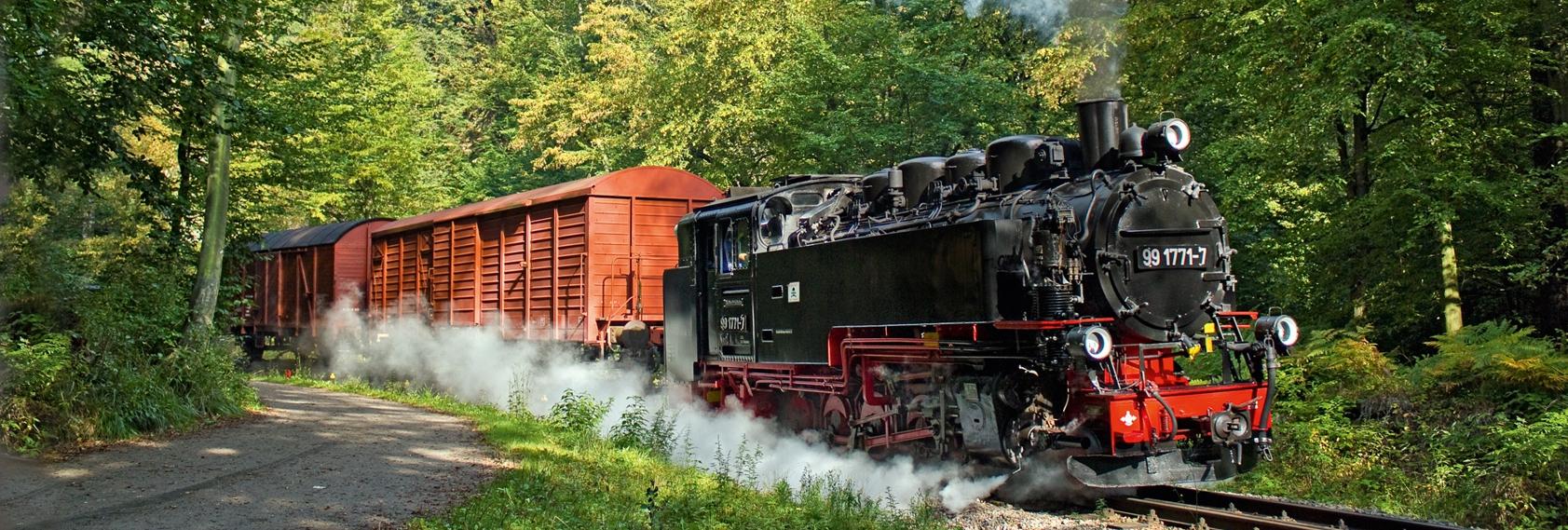 Dampfzug mit zwei braunen Güterwagen